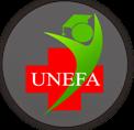 Universitas Efarina